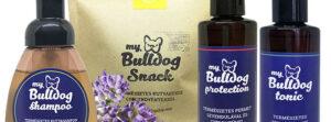 Mybulldogshop.com – Sales kommunikáció fejlesztése