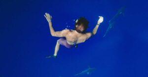 Cápák között – Ingyenes üzleti tanácsadó műsor